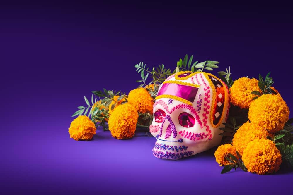 departamento, Monterrey, bienes raíces, inmuebles, kanat, mascotas, cuarentena, Huasteca, naturaleza, plusvalía, inversión, día de muertos